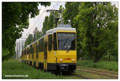 Tram Berlin - 2019-08 (olherfoto) Tags: bahn tram tramcar tramway strasenbahn berlin bvg tatra tatratram kt4d
