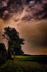 Abendlicht (bc-schulte) Tags: huawei mate 10 pro natur nature landschaft landscape abend evening light licht wolken clouds sky himmel