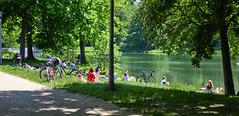 Inselteich (Bokko.) Tags: summer summervibes summerweather leipzig clarapark fuji fujix fujiprovia provia