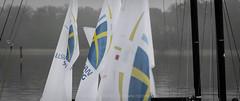Allsvenskan Segling - 2019 - Strängnäs