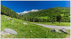 """""""El verde que todo lo inunda"""" (Gerkraus) Tags: primavera verde benasque aragon canon panoramica naturaleza spain pirineos"""