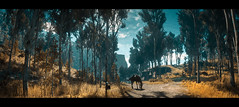Yellowstone, Arthur Morgan and a revenge (Skinny LSD) Tags: red dead redemption 2 videogame art arthur yellow ps4 photo paint panoramic rockstar western westworld wallpaper wood cinematic cowboy filmphotography lovuguys