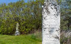 Grafton cemetery (chris e robert) Tags: grafton cemetery graftoncemetery sony sonyphoto sonya7iii sonyfe28mm20
