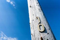 telephone pole (chris e robert) Tags: sony sonyphoto sonya7iii sonyfe28mm20