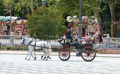 SEVILLA EN PRIMAVERA (ANDALUCÍA/ESPAÑA/SPAIN) (DAGM4) Tags: andalucía españa europa europe espagne espanha espagna espana espanya espainia spain spanien 2019 seville fiesta feriadesevilla sevilla