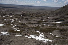 70 Mile Butte Trail - DSC_3472a (Markus Derrer) Tags: 70milebutte grasslands grasslandsnationalpark saskatchewan may markusderrer hikingtrail