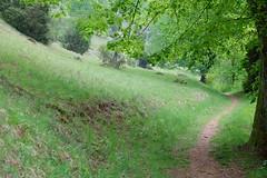 DOLLNSTEIN - WACHOLDERHAIN (Maikel L.) Tags: deutschland alemania germany europa europe natur nature landscape landschaft wacholderhain dollnstein path weg wanderung wandern hiking hike altmühlpanoramaweg altmühltal green grün