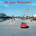 Homestead Florida Vintage Postcard