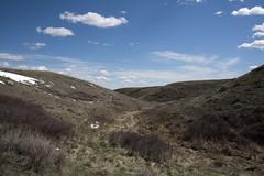 Timbergulch Trail, Grasslands - DSC_3513a (Markus Derrer) Tags: timbergulch markusderrer grasslandsnationalpark grasslands saskatchewan may ravine gully