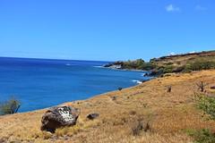 683 (bigeagl29) Tags: maalaea maui hawaii island oceanfront beach scenic scenery