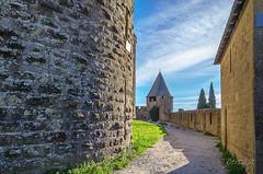 CARCASSONNE-043--OCCITANIE-PANORAMIQUE-_DSC0461 (bercast) Tags: aude carcassonne chateau chateaumedival france lesremparts occitanie ue bc bercast lacitédecarcassonne lamuraille