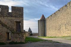 CARCASSONNE-044--OCCITANIE-PANORAMIQUE-_DSC0475 (bercast) Tags: aude carcassonne chateau chateaumedival france lesremparts occitanie ue bc bercast lacitédecarcassonne lamuraille
