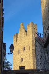 CARCASSONNE-095--OCCITANIE-PANORAMIQUE-_DSC0567 (bercast) Tags: aude carcassonne chateau chateaumedieval france occitanie ue bc bercast lamuraille àlintérieurdeacitédecarcassonne