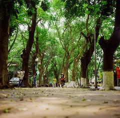 Ngang Phố... (Hanoi L i f e A r t) Tags: tuanducpham hanoi streetlife hanoilifeart vietnam ngc filmcamera filmphoto rolleiflex 35f lomo100 120mm mediumformat