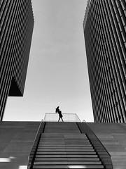 That will be yesterday ~ Germany (~mimo~) Tags: shotoniphone iphonex stairs fineart minimal umbrella hyatt blackandwhite photography street humansingeometry germany deutschland duesseldorf mobile