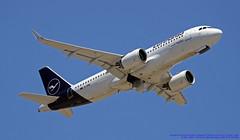 D-AINL LMML 11-05-2019 Lufthansa Airbus A320-271N CN 8383 (Burmarrad (Mark) Camenzuli Thank you for the 18.9) Tags: dainl lmml 11052019 lufthansa airbus a320271n cn 8383
