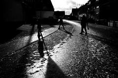 The way of the snail (Leica M6) (stefankamert) Tags: film analog grain light shadows people noir noiretblanc blackandwhite blackwhite leica m6 leicam6 voigtländer ultron kodak trix stefankamert geislingen textures backlight