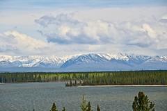 Willow Lake (3) (neukomment) Tags: willowlake alaska may 2019 spring canoneosrebelt5i sigmalens 18250mmf3563dcosmacrohsm