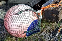DSC03469 - Big Boy (Buoy) (archer10 (Dennis)) Tags: sony a6300 ilce6300 18200mm 1650mm mirrorless free freepicture archer10 dennis jarvis dennisgjarvis dennisjarvis iamcanadian novascotia canada glenmargaret buoy fishing