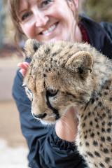 Trainer with Cheetah Cub. (LisaDiazPhotos) Tags: cheetah behind scenes callie cub lisadiazphotos sandiegozoo sandiegozooglobal sandiegozoosafaripark sdzsafaripark sdzoo sdzsp