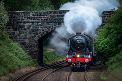 Flying Scotsman 19/05/2019 (jasty78) Tags: theflyingscotsman flyingscotsman 60103 steam train bridge railway scotland tamron150600mm nikond810 dunfermline dunfermlinetown fife