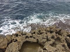 070_Azure Window (SmoKingTiger1551) Tags: malta gozo isle island azurewindow sea water waves coast rocks eroded mediterranean