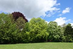 Parc des Raisses @ Annecy-le-Vieux (*_*) Tags: europe france hautesavoie 74 annecy annecylevieux savoie spring printemps 2019 may park