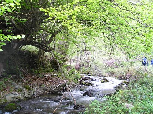 Senderismo por ruta del Valle de Altuzarra Ezcaray Fotografia Javi Cille (19)