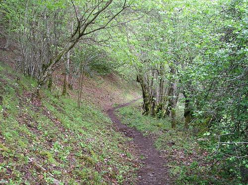 Senderismo por ruta del Valle de Altuzarra Ezcaray Fotografia Javi Cille (20)