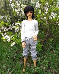 Весна))) (irchiabramovich) Tags: shiro shirotachibana sd sd17 volks superdollfie volksshirotachibans bjd bjdboy