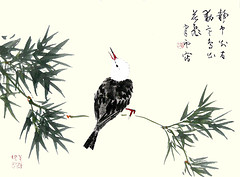 Black bulbul (Japanese Flower and Bird Art) Tags: bird black bulbul hypsipetes leucocephalus pycnonotidae suiun komuro nanga woodblock picture book japan japanese art readercollection