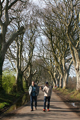 IMG_3561 (SomeThingsIKnow) Tags: p chris darkhedges beech trees