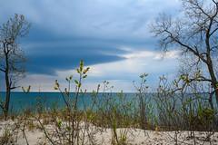 Waiting out a storm. (dunescape) Tags: lakeontario sandbanksprovincialpark sanddune spring ontario