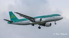 EI-DEA  Airbus A320-200  -  Aer Lingus (Peter Beljaards) Tags: msn2191 cfm565 eidea stfidelma fiedeilme airbusa320200 a320 airbusa320 peterbeljaards plane vliegtuig approach jetliner nikond5500 nikon70300mmf4556 aviationphotography haarlemmermeer ams eham final