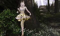 Is she gone? (Teuila Porcelain (Taking/Needing Clients :P)) Tags: gacha canimal ramasalon wonderland rabbit whiterabbit porcelain sd applefall theforge baiastice maitreya catwa dazed
