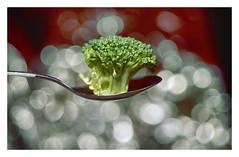A spoonful of Veggies (VanveenJF) Tags: spoonful macromondays vanveenjf sony macro mm hmm broccoli