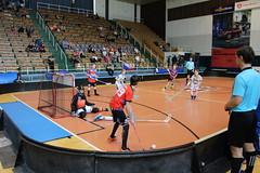 IMG_4360 (Sokol Brno I EMKOCase Gullivers) Tags: turnajelévů brno děti florbal 2019 pohár sokol