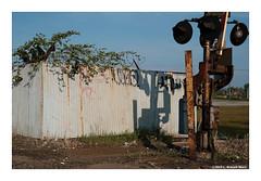 Edge of Reality (TooLoose-LeTrek) Tags: detroit abandon urbandecay globalism railroad fence xt30 fuji