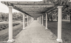 The Last Pergola (Jim Frazier) Tags: instagram 3d3layer 2019 2019cantigny 20190327cantignyphasetwoiscoming 20190512cantignyphotowalk abstract arbor bw blackandwhite botanic cantigny cantignypark centered centralperspective class cloudy deepdepthoffield desaturated dupage formalgarden gardens graceful headon horticulture il illinois jimfraziercom landscape lanes leadinglines linedup lines may monochrome overcast parks paths pathways pergolas perpendicular photo photoclass photowalk pillars pov preserves q4 scenery scenic spring structure structures study symmetrical symmetry tightcrop trails trellis vanishingpoint verticallines verticals volunteer walkways wheaton