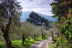 Auf der Rilke-Promenade (blichb) Tags: 2019 arco frühling gardasee italien leica leicaq trentino blichb rilkepromenade olivenbäume burg landschaft