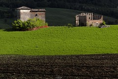 Emerald green necks (Luca Nacchio) Tags: panorama vista veduta castelvetro modena cartolina primavera 2019 tempo cielo verde emilia italia view villages postcard time sky green beautiful colli modenesi hills italy