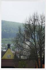 Shirley 1926-2019 R.I.P. 22 (John Teulon Ladd) Tags: schwarzwald shirley helios44m458mmf2 fujixt10 blackforest