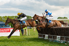 Race 6 - Rules Of War-11 (JTW Equine Images) Tags: p2p point pointtopoint knutsford cheshire tabley nh racing horse equine jockey trainer jumps