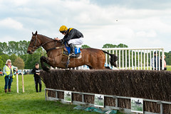 Race 6 - Rules Of War-7 (JTW Equine Images) Tags: p2p point pointtopoint knutsford cheshire tabley nh racing horse equine jockey trainer jumps