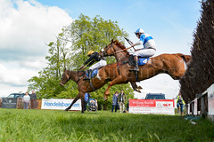 Race 6 - Rules Of War-5 (JTW Equine Images) Tags: p2p point pointtopoint knutsford cheshire tabley nh racing horse equine jockey trainer jumps