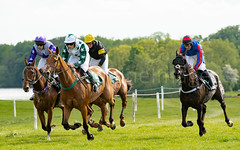 Race 5 - Duke Arcadio-9 (JTW Equine Images) Tags: p2p point pointtopoint knutsford cheshire tabley nh racing horse equine jockey trainer jumps