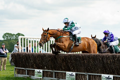 Race 5 - Duke Arcadio-6 (JTW Equine Images) Tags: p2p point pointtopoint knutsford cheshire tabley nh racing horse equine jockey trainer jumps