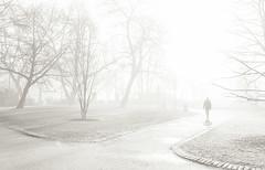 Stockholm, March 10, 2016 (Ulf Bodin) Tags: canonefm222stm sverige vår canoneosm3 spring berzeliipark mist stockholm streetphotography outdoor fog dimma sweden urbanlife stockholmslän