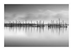 Joss Sticks (TS446Photo) Tags: longexposure nikon water smoke mono monochrome blackandwhite reflection sticks fishing nets tone fine art travel birds