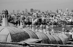 Istanbul in bw 5 (n.okyayli) Tags: istanbul blackandwhite bw nikond70s monochrome